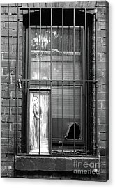Acrylic Print featuring the photograph Almost Home by Joe Jake Pratt
