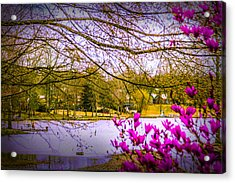 Almost Spring - Landscape Acrylic Print by Barry Jones