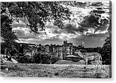 Alnwick Castle And Fallow Deer Acrylic Print