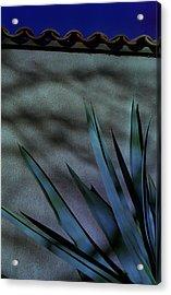 Aloe Cool Acrylic Print