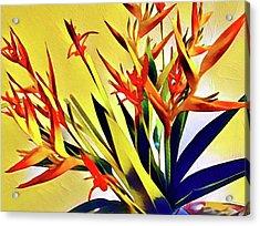 Aloha Bouquet Of The Day - Halyconia Birds In Orange Acrylic Print