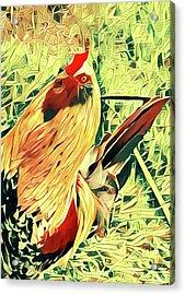Aloha Doodle Doo Acrylic Print