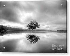Acrylic Print featuring the photograph Alone Bw by Douglas Stucky