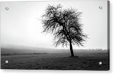 Acrylic Print featuring the photograph Alone In A Field by Andrew Pacheco