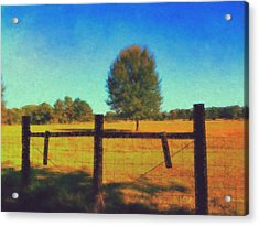 Alone In A Pasture Acrylic Print
