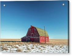 Alone In The Middle Acrylic Print