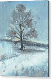 Alone In Winter Acrylic Print by Spencer Meagher
