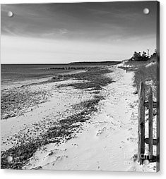 Acrylic Print featuring the photograph Alone by Michelle Wiarda