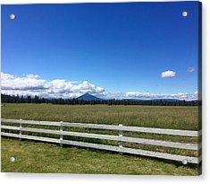 Along The Fence Line Acrylic Print