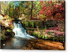 Acrylic Print featuring the photograph Along The Horton Trail by Anthony Citro