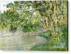 Acrylic Print featuring the painting Along The Susquehanna by Melly Terpening
