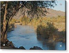 Along The Verde River 9 Acrylic Print by Susan Heller