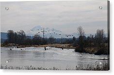 Alouette River Acrylic Print
