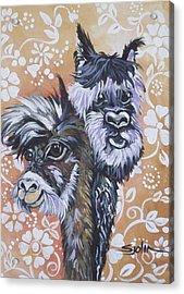 Acrylic Print featuring the painting Alpaca Do-bee  Brothers by Patty Sjolin