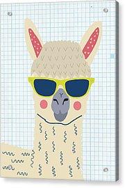 Alpaca Acrylic Print by Nicole Wilson