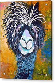 Acrylic Print featuring the painting Alpaca Punked by Patty Sjolin