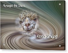 Alpaca Smile Acrylic Print