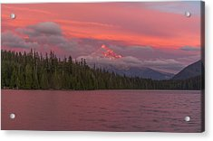 Alpenglow At Lost Lake Acrylic Print by Brian Governale