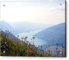Alpine Flora On Top Of Schynige Platte Acrylic Print