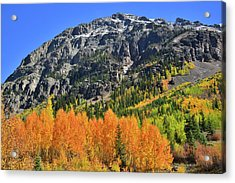 Acrylic Print featuring the photograph Alpine Loop Road Aspens by Ray Mathis