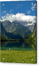 Alpine Meadow Acrylic Print by Frank Tschakert