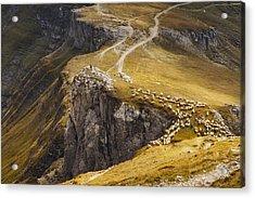 Alpine Pastures Acrylic Print