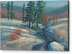 Alpine Stream Acrylic Print by Donald Maier