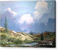 Alpine Vale Acrylic Print by John Wise