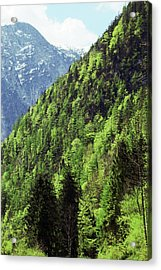 Alpine View In Green Acrylic Print by Brooke T Ryan