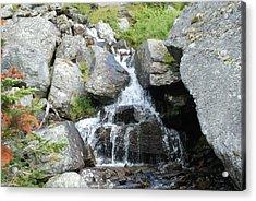 Alpine Waterworks Acrylic Print