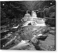 Alsea Falls Acrylic Print