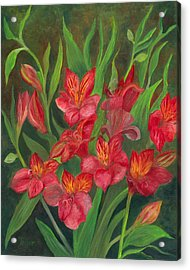 Alstroemeria Acrylic Print