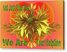 Alternative Medicine Acrylic Print