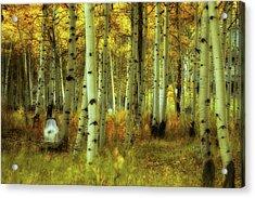 Alvarado Autumn 1 Acrylic Print by Marie Leslie