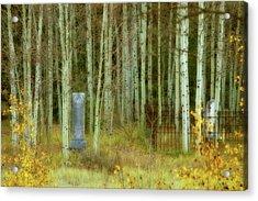 Alvarado Cemetery 41 Acrylic Print by Marie Leslie