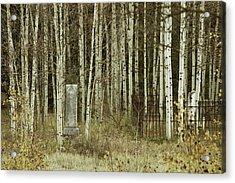 Alvarado Cemetery 42 Acrylic Print by Marie Leslie