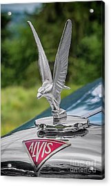 Alvis Car Mascot Acrylic Print by Adrian Evans