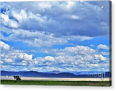Sky Over Alvord Playa Acrylic Print by Michele Penner