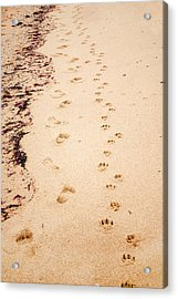 Always Beside You Acrylic Print
