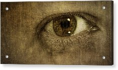 Always Watching Acrylic Print by Scott Norris