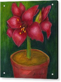 Acrylic Print featuring the painting Amaryllis by Jeanne Kay Juhos