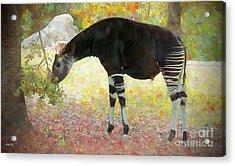 Amazing Graze Acrylic Print