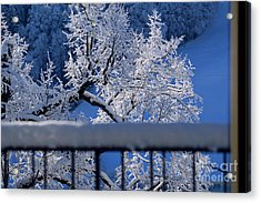Acrylic Print featuring the photograph Amazing - Winterwonderland In Switzerland by Susanne Van Hulst