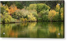 Amber Days Of Autumn Acrylic Print by Marion Cullen