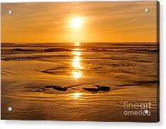Amber Embers Acrylic Print by Alexander Kunz