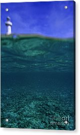 Amedee Lighthouse Island Seen From Underwater Acrylic Print by Sami Sarkis