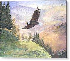 American Bald Eagle Acrylic Print by Nicholas Minniti