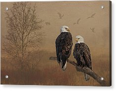 Acrylic Print featuring the photograph American Bald Eagle Family by Patti Deters