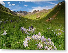 Acrylic Print featuring the photograph American Basin by Steve Stuller