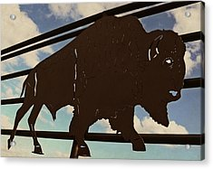 American Bison Silhouette Acrylic Print by Chris Berry